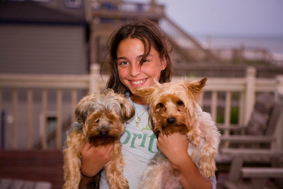 Niña encantadora con dos cachorros en las manos