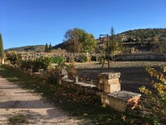 Huerta del Monasterio de Silos